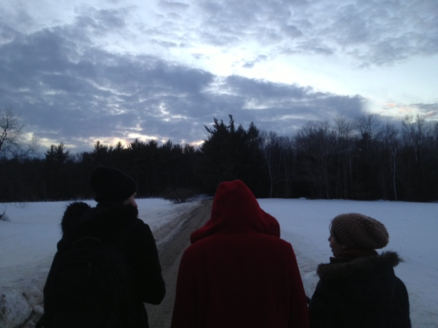 Swan-eye-view of MacDowell colonists fearlessly forging onwards...